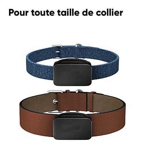 Taille reglable traceur chien